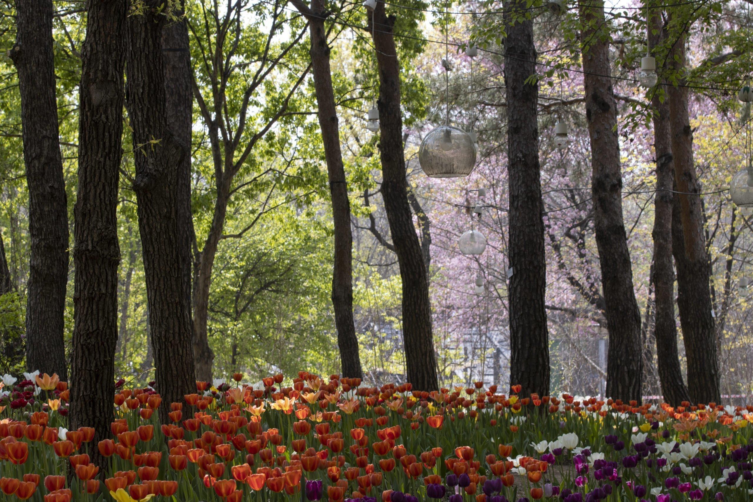 서울숲_20210411_0146